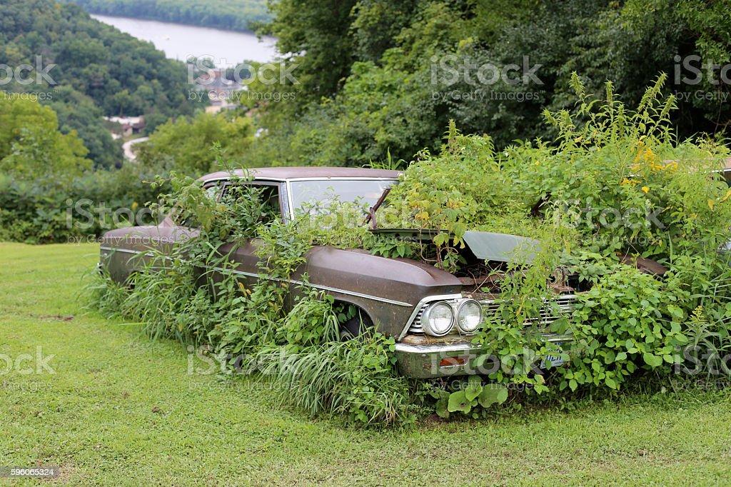 Scrap yard car stock photo