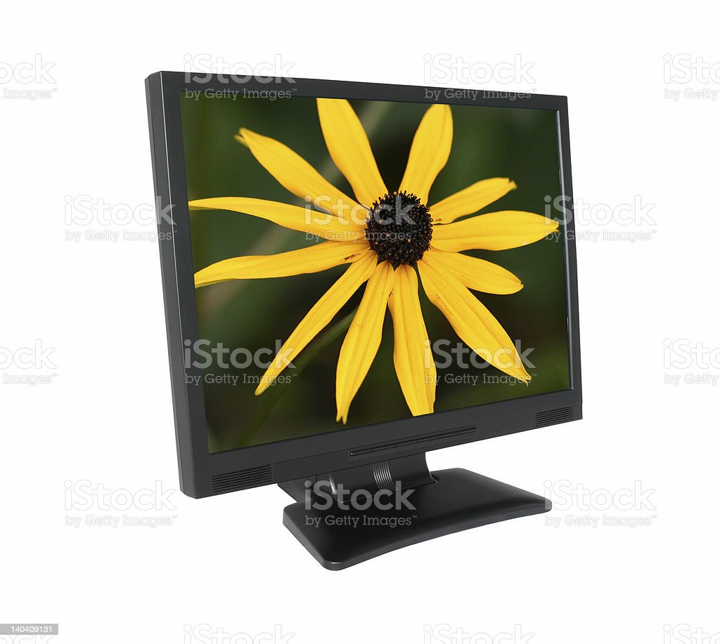 LCD screen with gorgeous flower #2 royalty-free stock photo