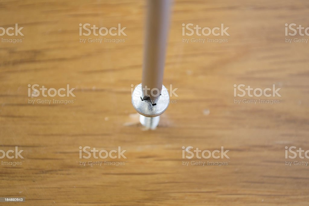 screwdriver in a wood royalty-free stock photo