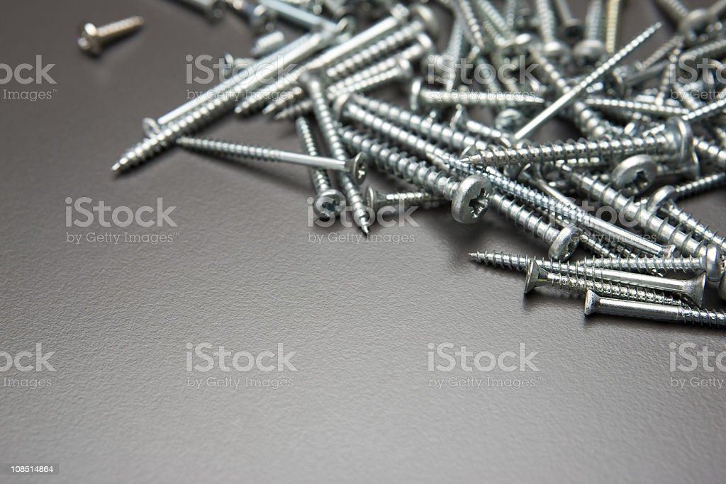 Screws (1ds MarkIII) royalty-free stock photo