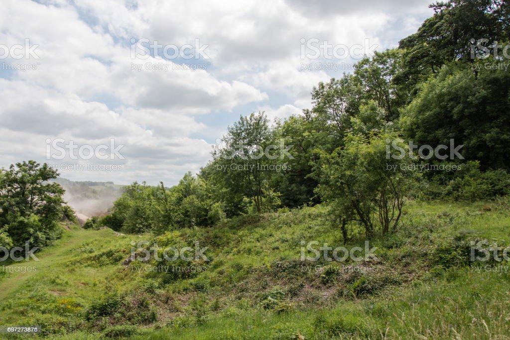 Scrub encroachment onto calcareous grassland stock photo