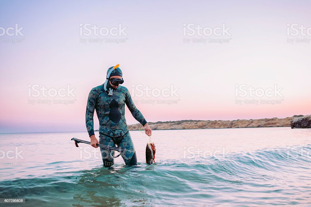 scuba diver coming back from spear fishing stock photo