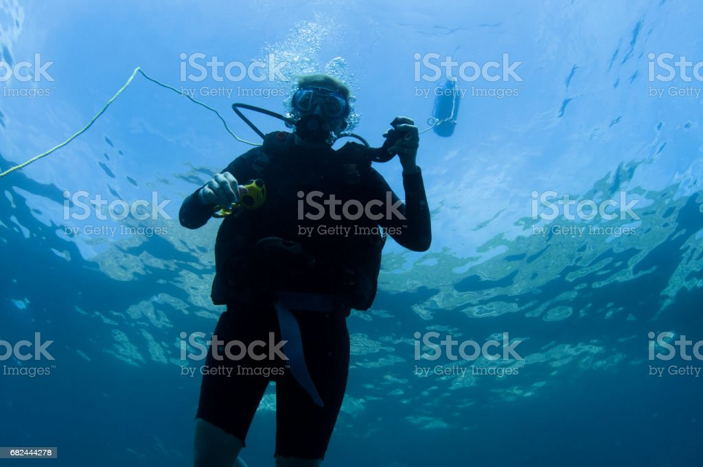Scuba Diver Descending from Surface holding LPI Beginning Dive stock photo