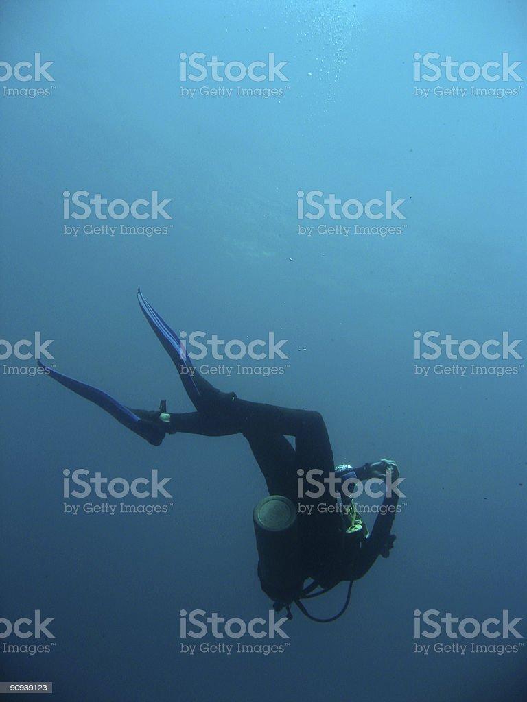 scuba diver descending sipadan royalty-free stock photo