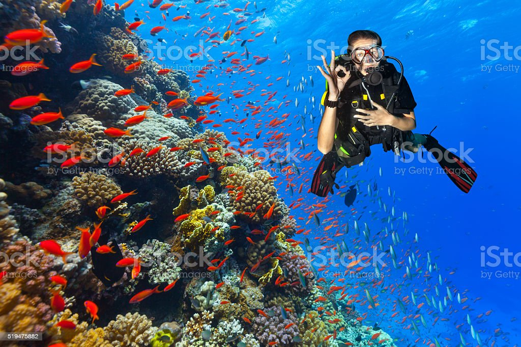 Scuba diver explore a coral reef showing ok sign stock photo