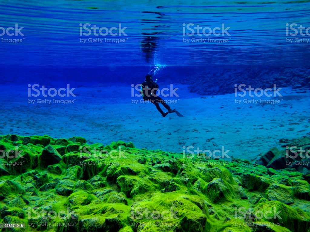 Scuba Diver Hovering Over Green Carpet Algae at Continental Split at Silfra in Deep Section at Pingvellir National Park stock photo