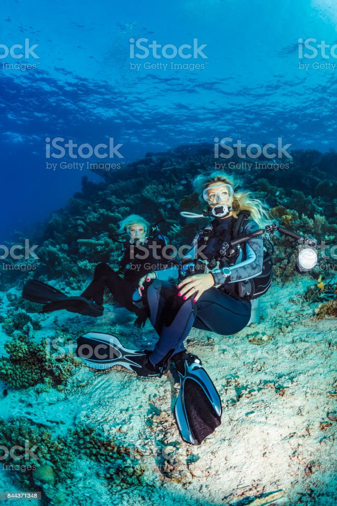 Scuba diver is exploring and enjoying Coral reef  Sea life Couple Two sporting women Underwater photographer stock photo
