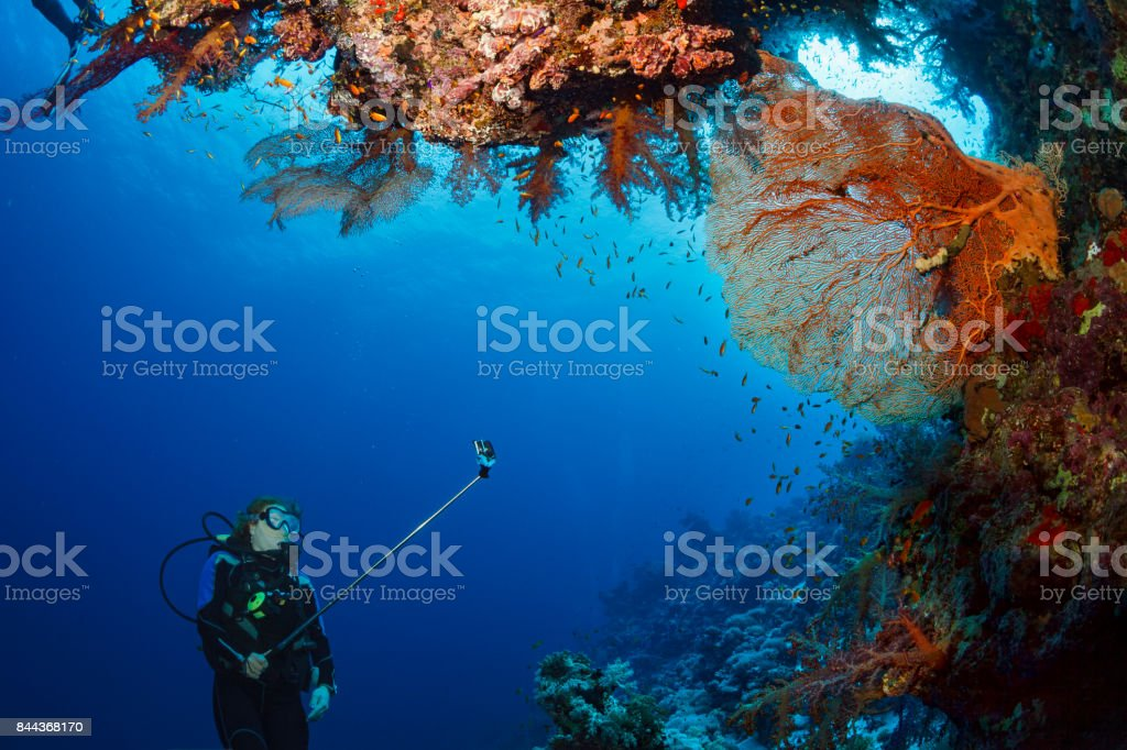 Scuba diver is exploring and enjoying Coral reef  Sea life  Sporting women Underwater stock photo