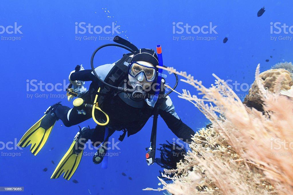 Scuba diver royalty-free stock photo