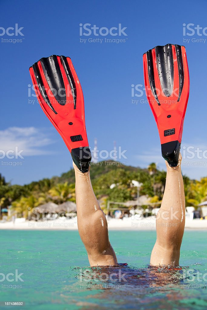 Scuba diver with fins out of water stock photo