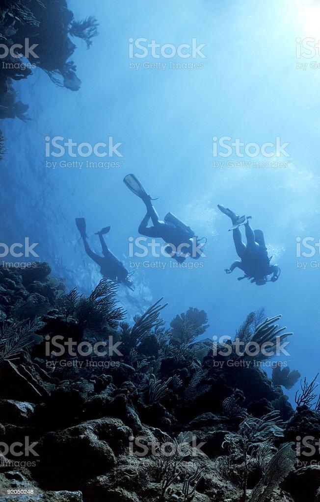 Restitution de la plongée sous-marine en profondeur photo libre de droits