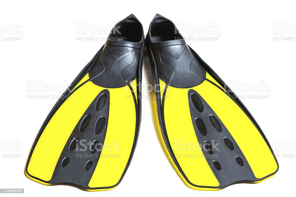 Scuba diving fins, flippers, isolated on white background stock photo
