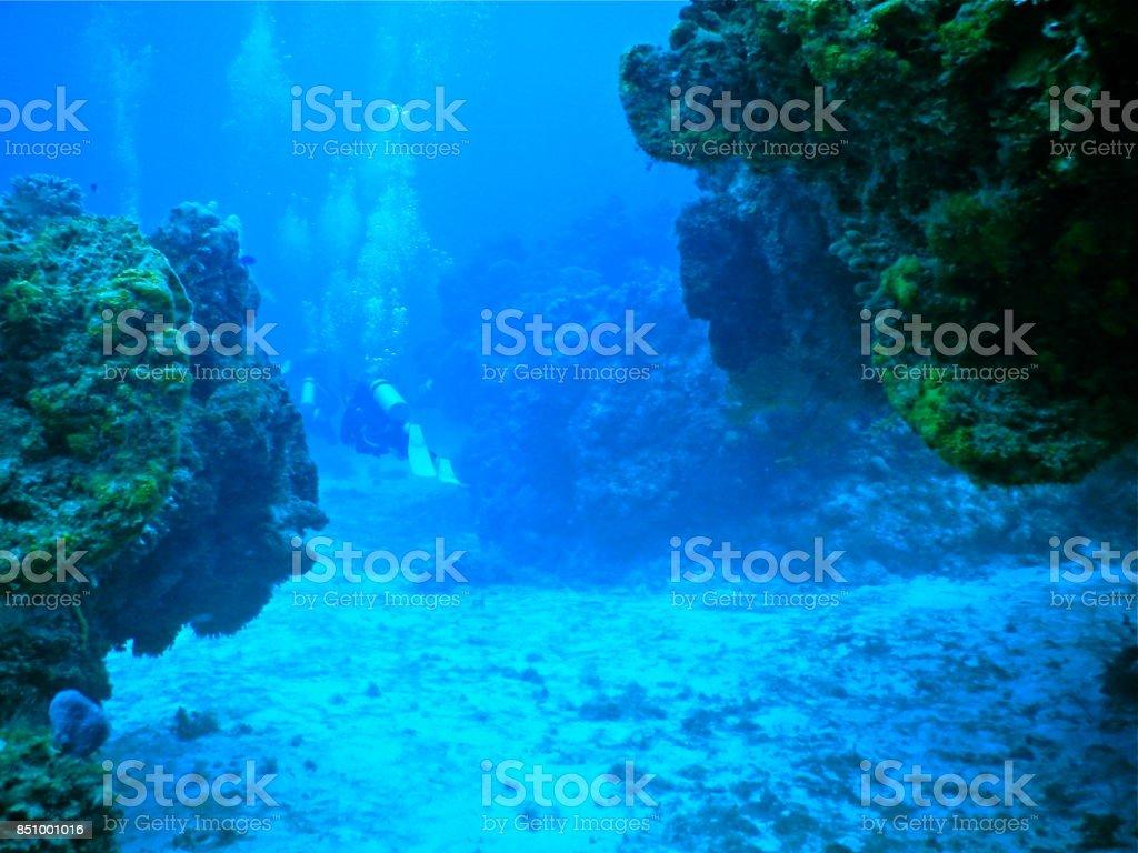 Scuba diving, Mexico stock photo