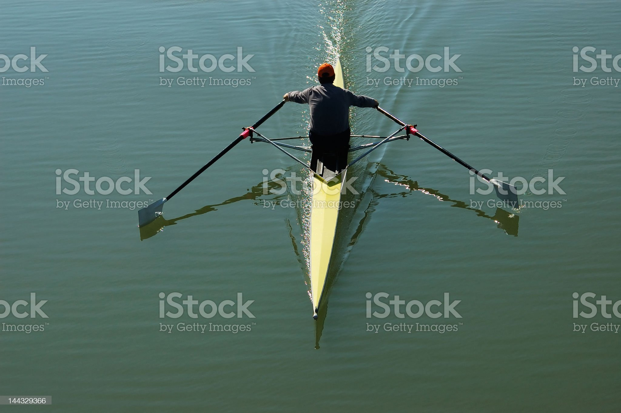 Sculler royalty-free stock photo