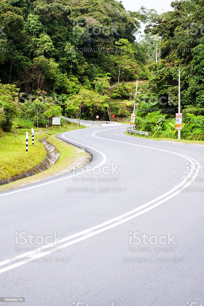 S-curve in Cameron Highlands stock photo