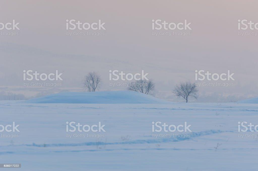 Scythian burial mounds stock photo