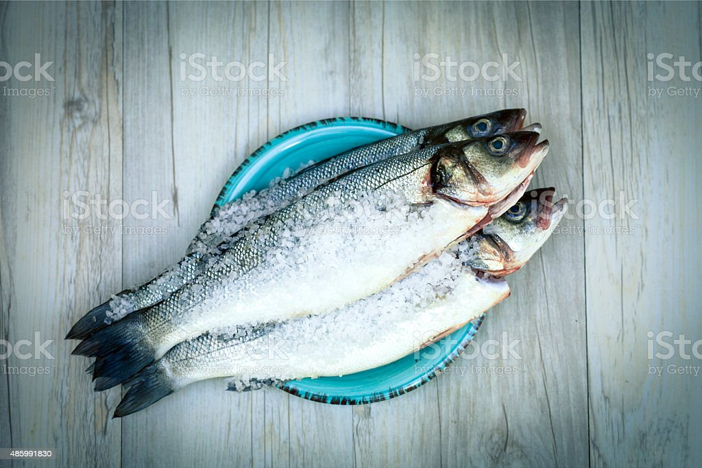 Sea bass in salt stock photo