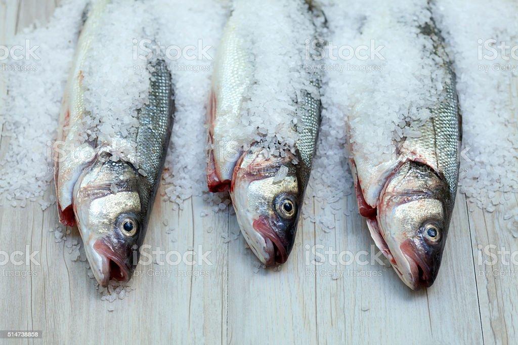 Sea bass in salt stock photo