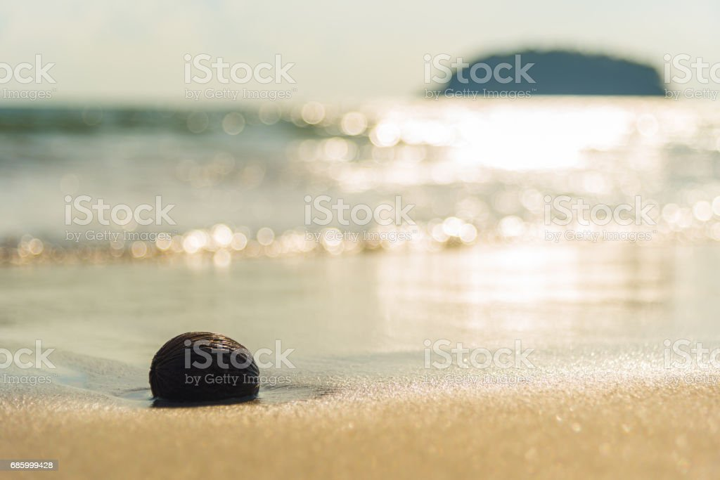 sea beach  with island background stock photo