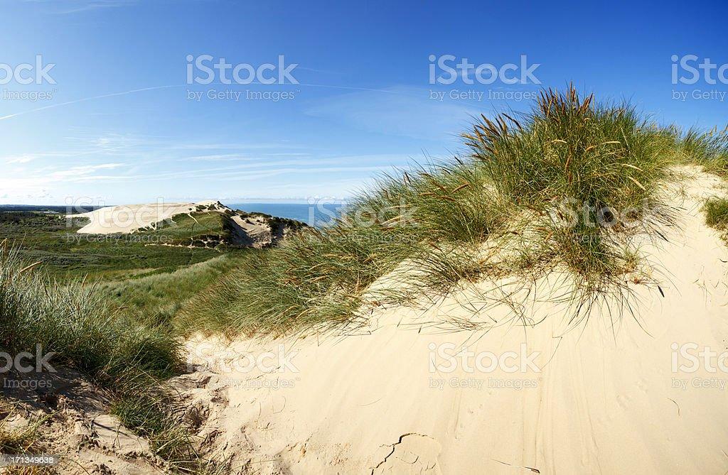 Sea bluffs in northern Jutland royalty-free stock photo
