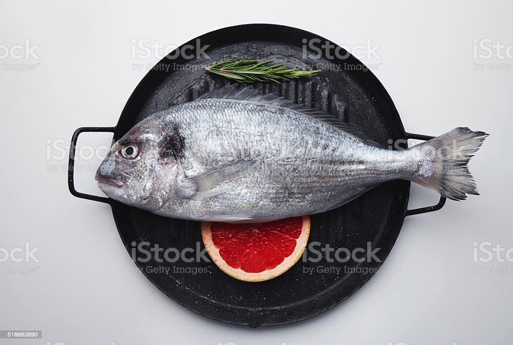 Sea bream, dorado fish set stock photo