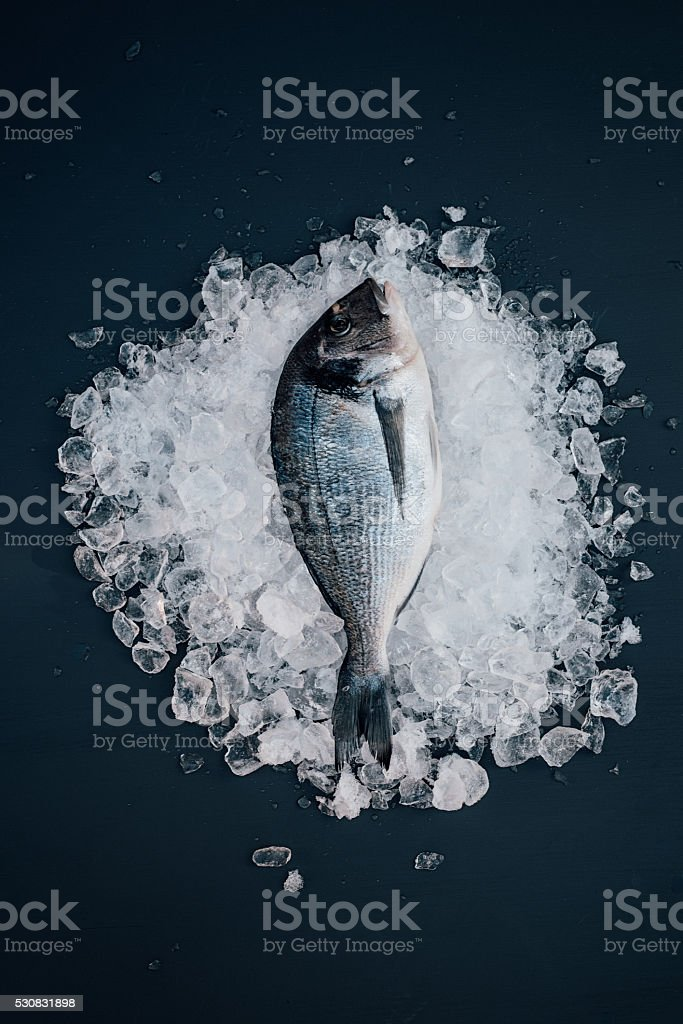Sea bream on ice seafood still life stock photo