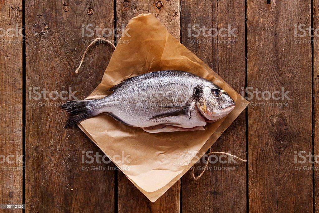 Sea Bream stock photo