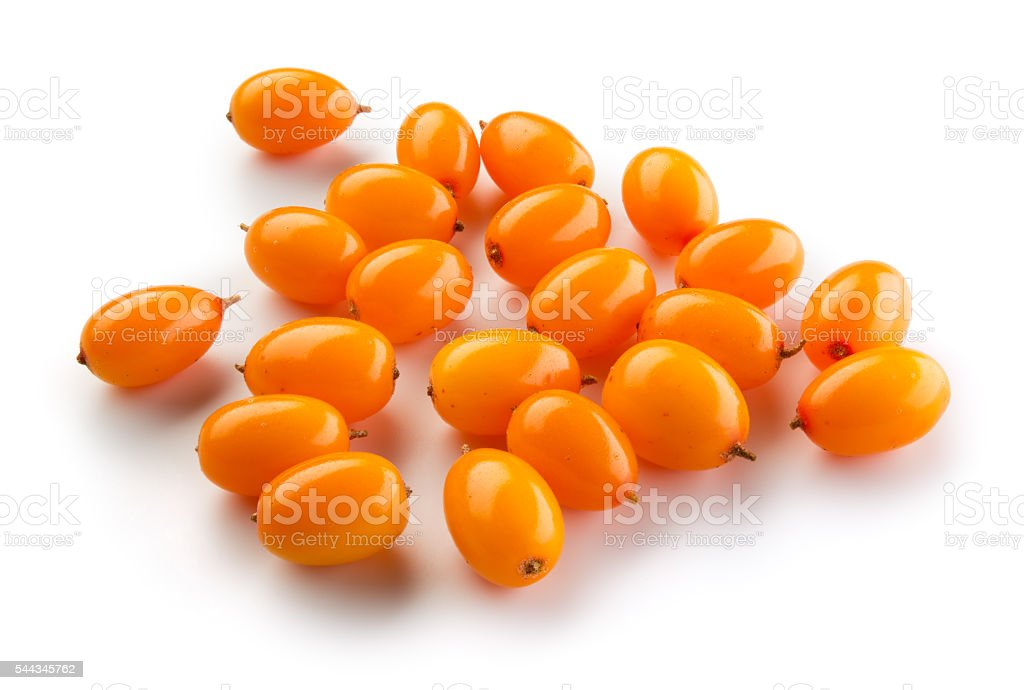 Sea buckthorn isolated on the white. stock photo