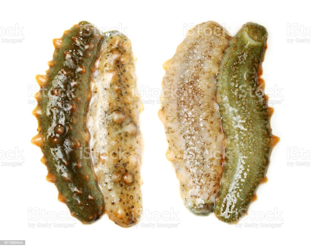Sea cucumber as a delicious sea food in Asian countries on white...