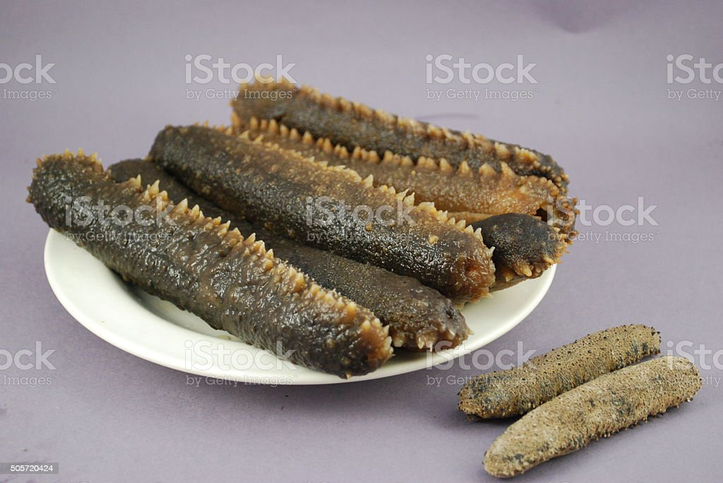 Sea cucumber is isolated stock photo