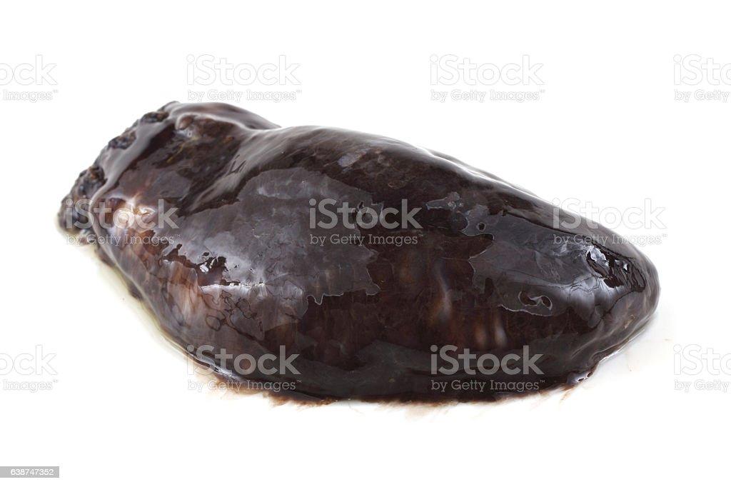 Sea cucumbers (cucumaria) stock photo
