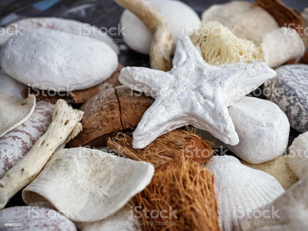 Sea decoration still life stock photo