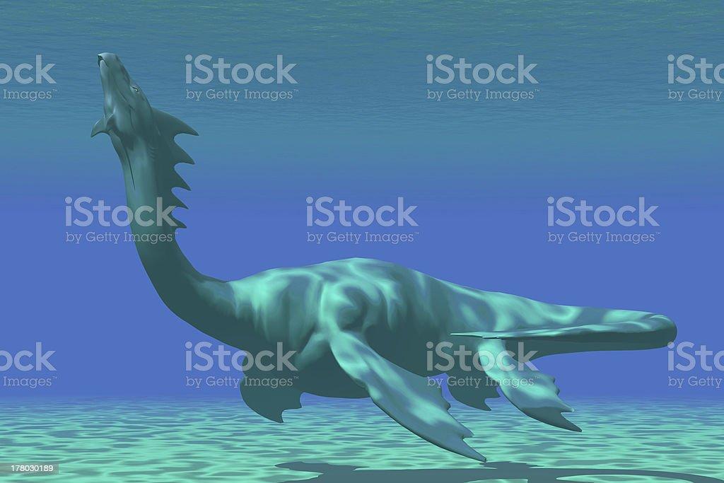 Sea Dragon stock photo