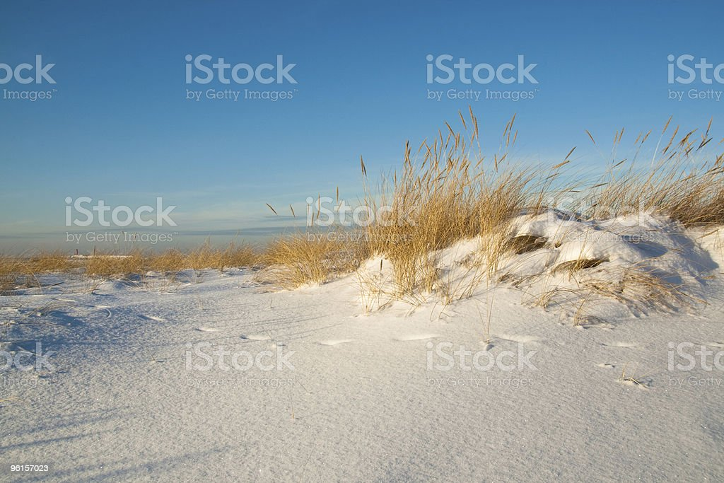 Sea dunes covered with snow stock photo