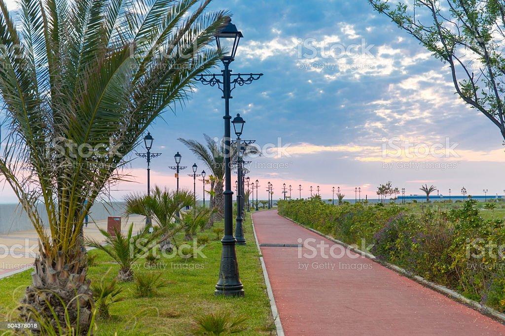 Sea embankment path poad palm tree sunset Sochi Russia stock photo
