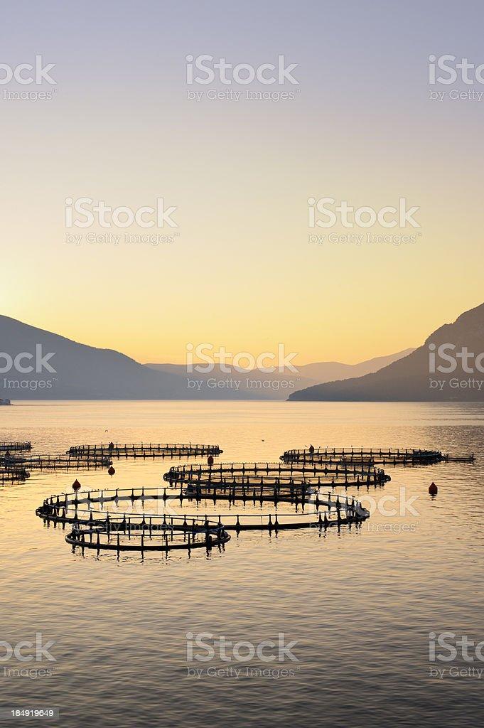 Sea Fish farm in Greece stock photo