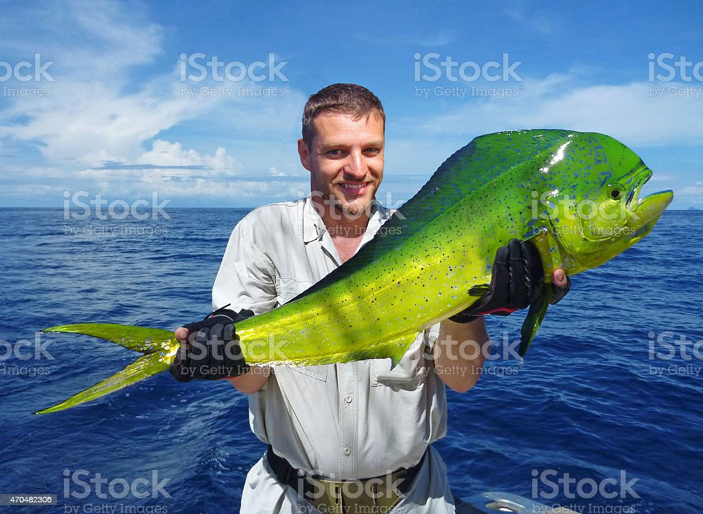Sea fishing. Big game fishing. catch of fish stock photo