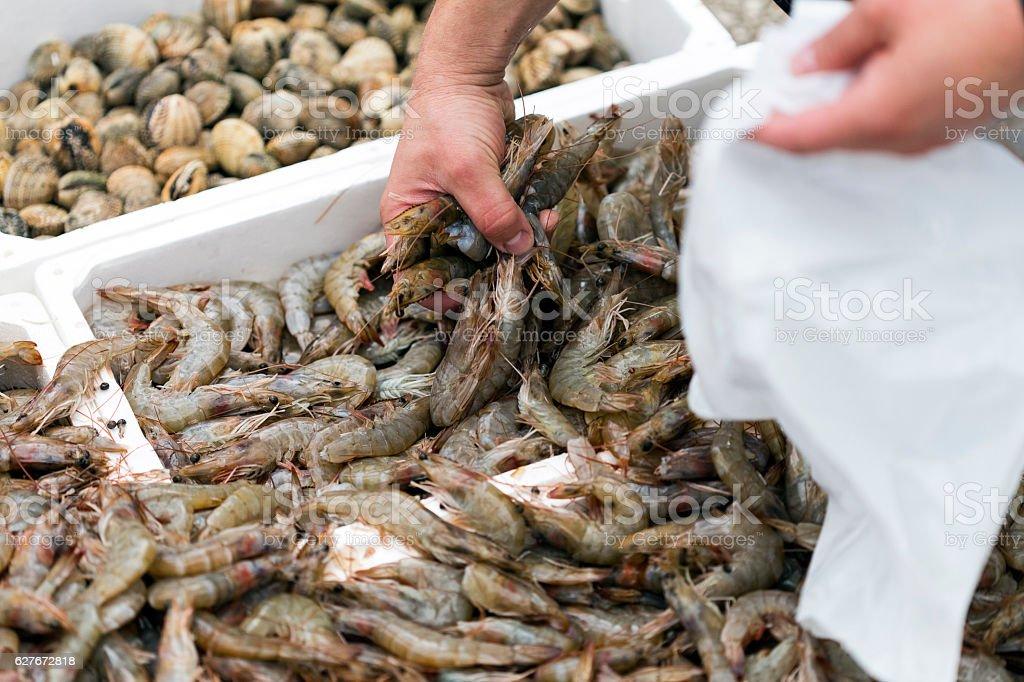 Sea food market stock photo