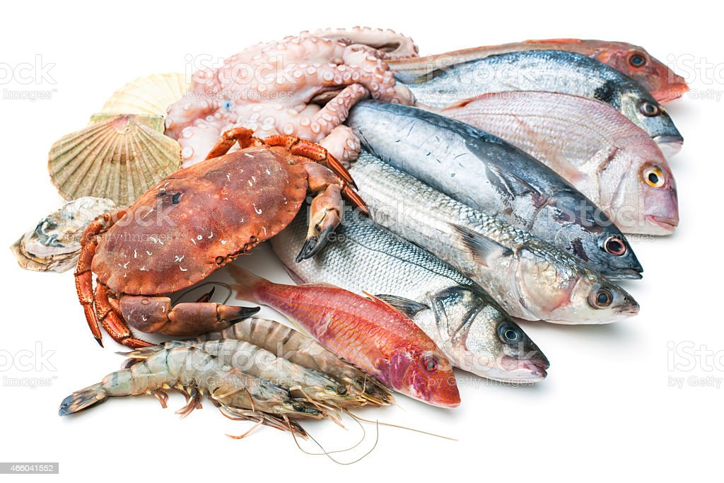 Sea food stock photo