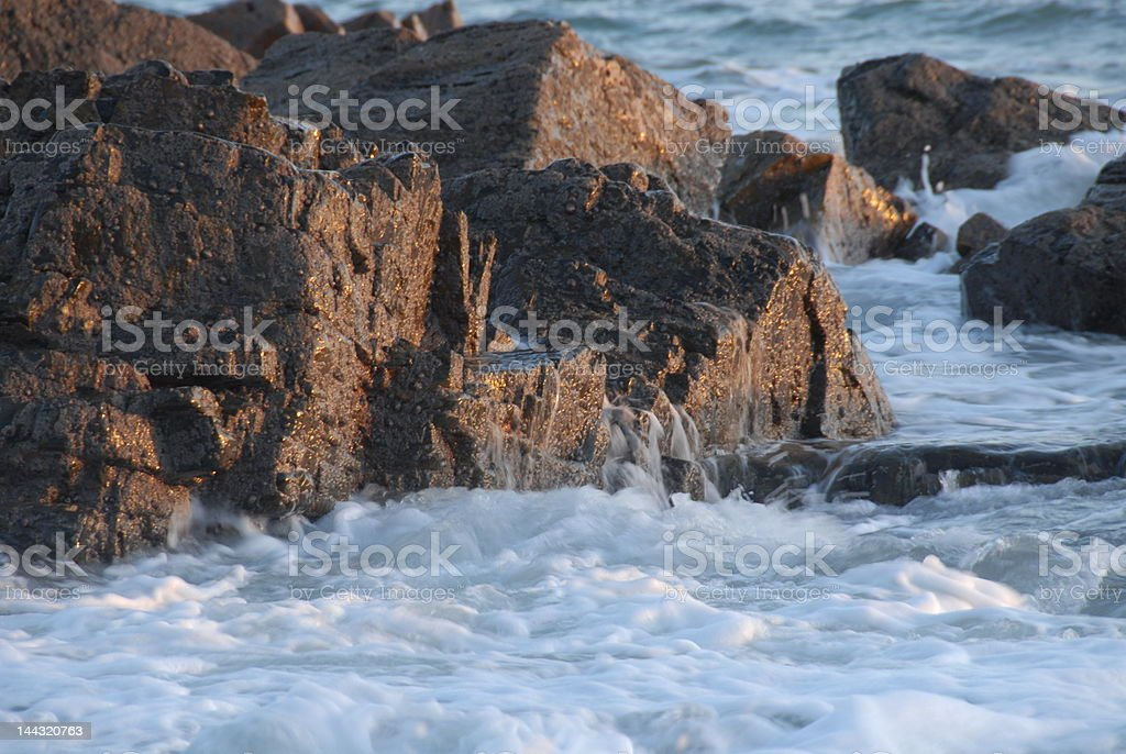 Sea Forms royalty-free stock photo