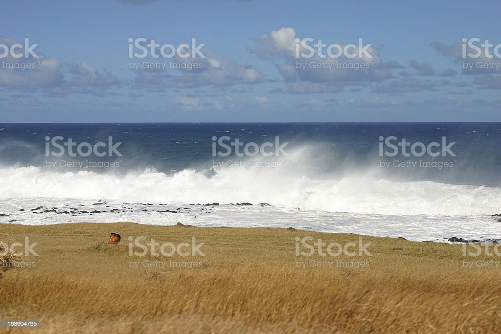 Sea, grass and clouds royalty-free stock photo