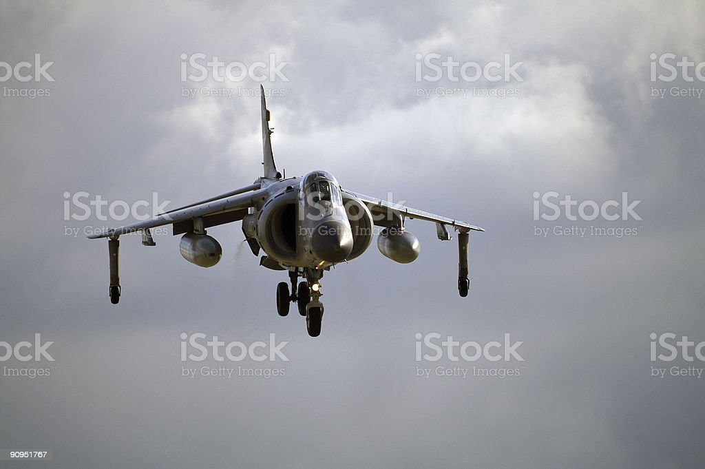 Sea Harrier hovering royalty-free stock photo