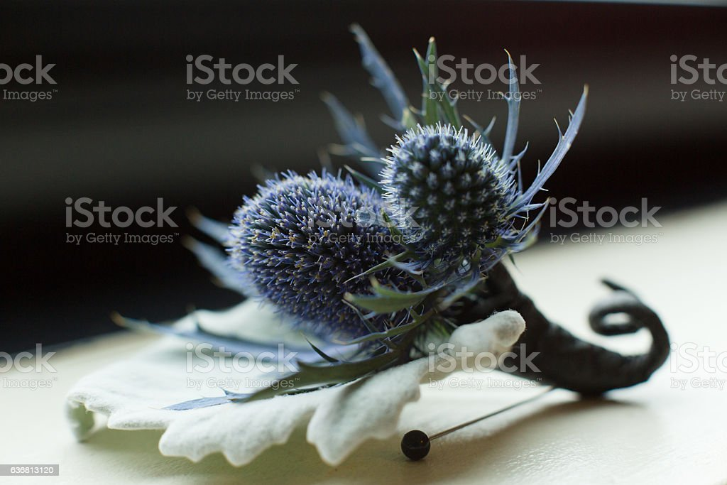 Sea Holly Boutonniere stock photo