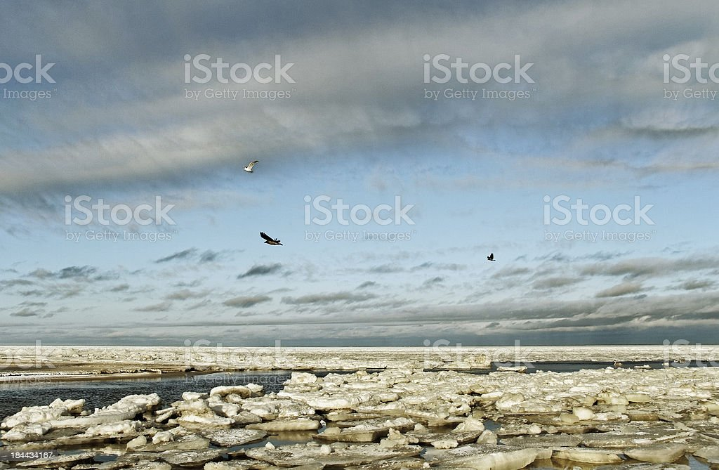 Sea in winte. royalty-free stock photo