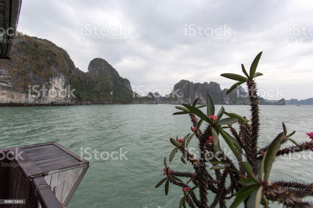 sea landscape. Ha Long Bay, Vietnam stock photo