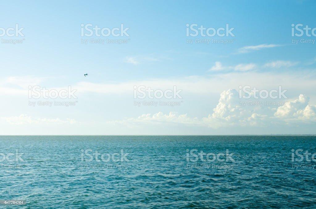 Sea landscape. stock photo