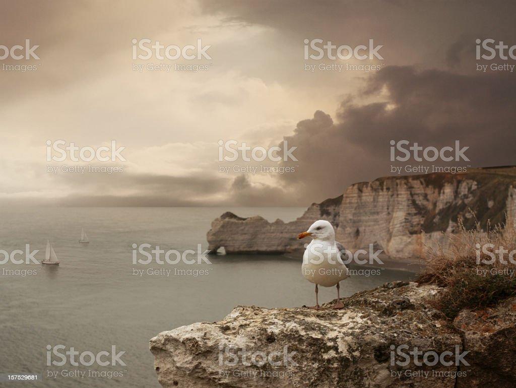 Sea landscape with stone bridge, ships and seagull stock photo