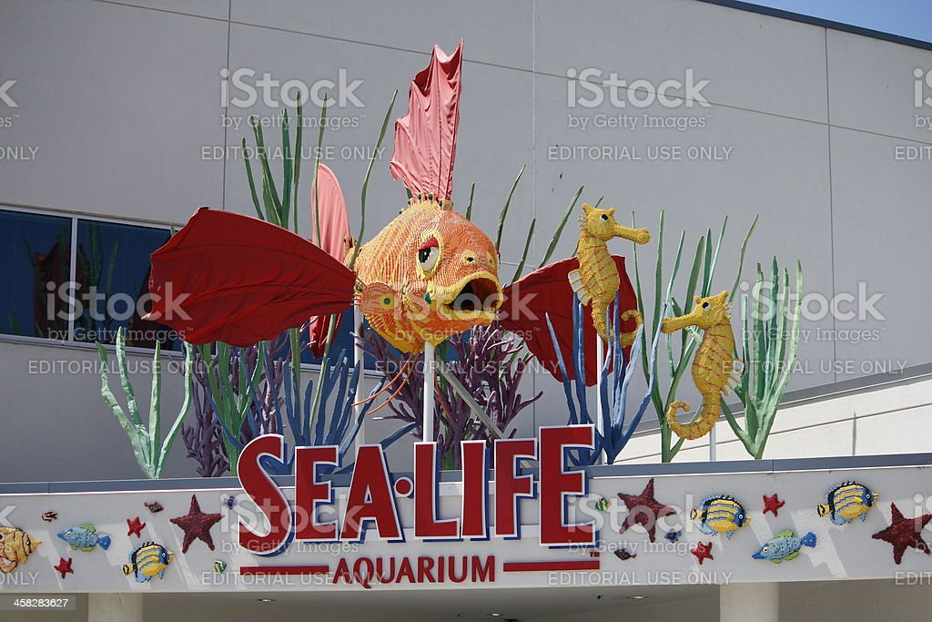 Sea Life Aquarium, Legoland, California Theme Park stock photo