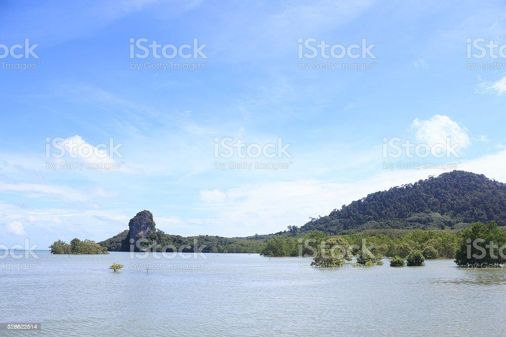 Море и остров мангровый лес в солнечный голубое небо Стоковые фото Стоковая фотография