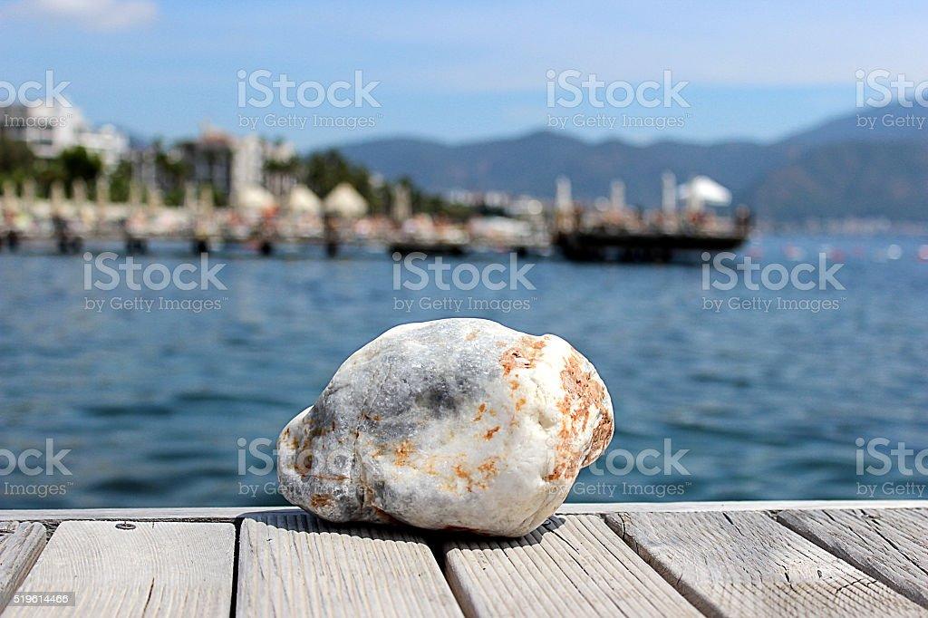 sea nature stock photo